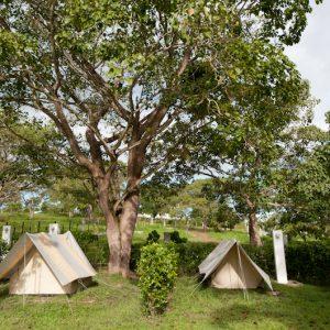 Hotel-camping-Doradal-Parque-Tematico-hacienda-Napoles-galeria-1